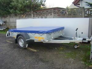 DSC08555